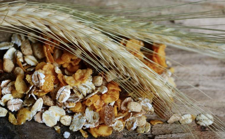 cereals-2437808_1920